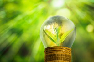 Government consults on introduction of climate reporting for large private companies